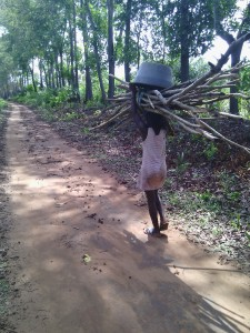 Yatou carrying wood to the area where the machine has been brought.